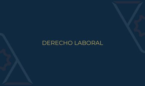 Comité Derecho Laboral ANADE