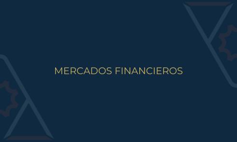 Comité Mercados Financieros ANADE