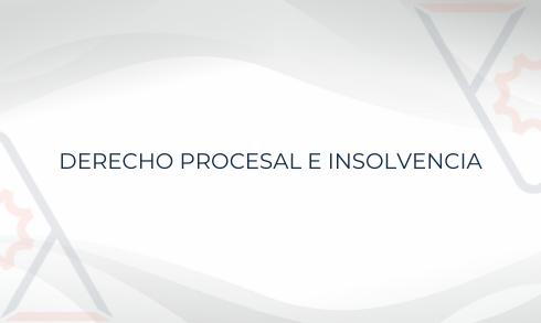 Comité Derecho Procesal e Insolvencia ANADE