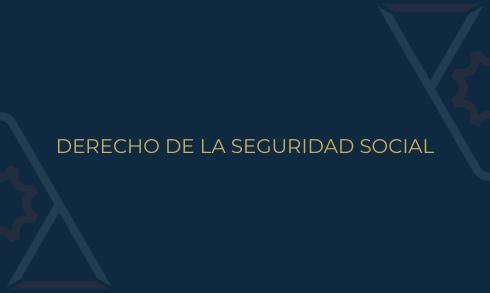 Comité Derecho de la Seguridad Social ANADE