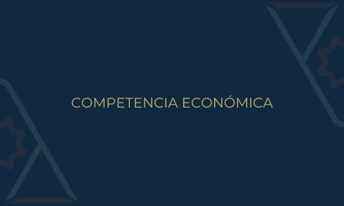 Comité Competencia Economica ANADE